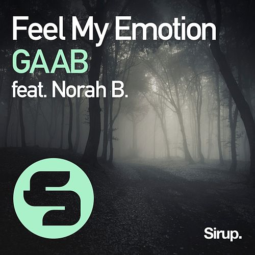 Feel My Emotion de Gaab
