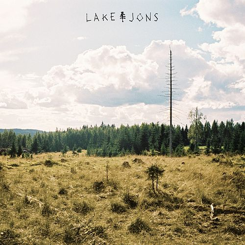Stupidity by Lake Jons