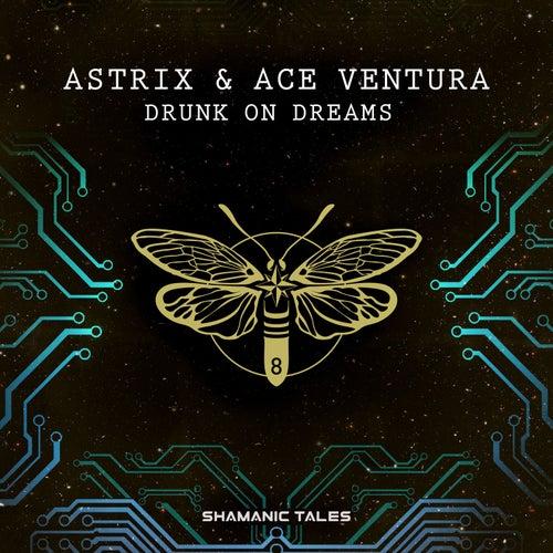 Drunk on Dreams de Astrix
