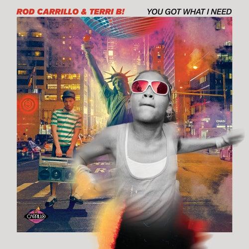 You Got What I Need von Rod Carrillo
