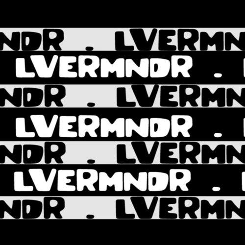 1.2. Step van LveRmndr