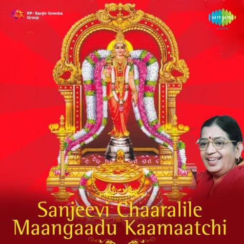 Sanjeevi Chaaralile Maangaadu Kaamaatchi de P. Susheela