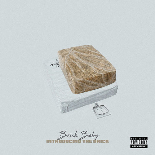 Introducing the Brick by Brick Baby