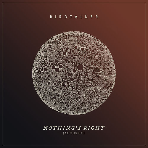 Nothing's Right (Acoustic) by Birdtalker
