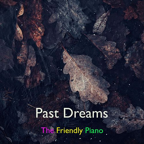 Past Dreams by The Friendly Piano