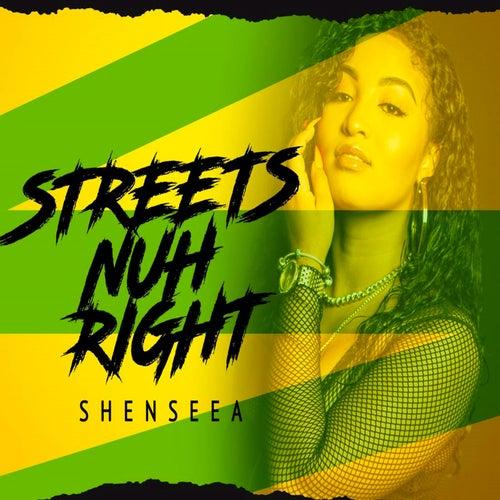 Streets Nuh Right de Shenseea