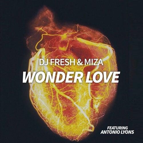 Wonder Love von DJ Fresh