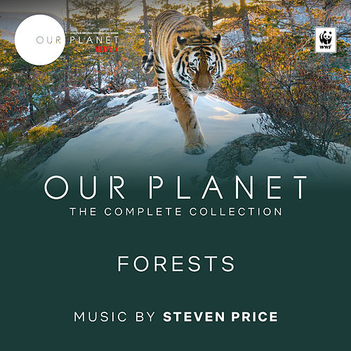Forests (Episode 8 / Soundtrack From The Netflix Original Series 'Our Planet') de Steven Price