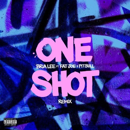 One Shot (feat. Fat Joe & Pitbull) (Remix) von Bria Lee