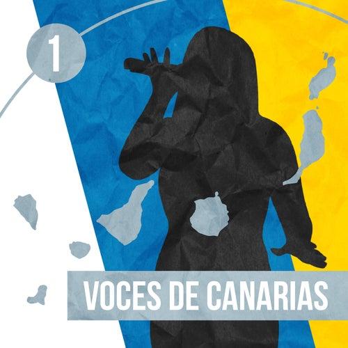 Voces de Canarias (Vol. 1) by Various Artists