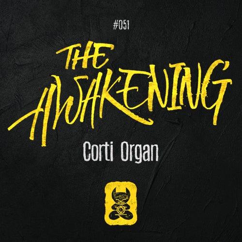 The Awakening by Corti Organ