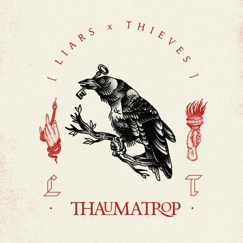 Thaumatrop di Liars