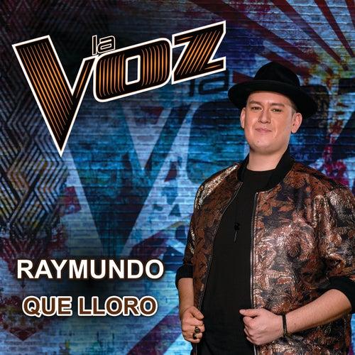 Que Lloro (La Voz US) von Raymundo