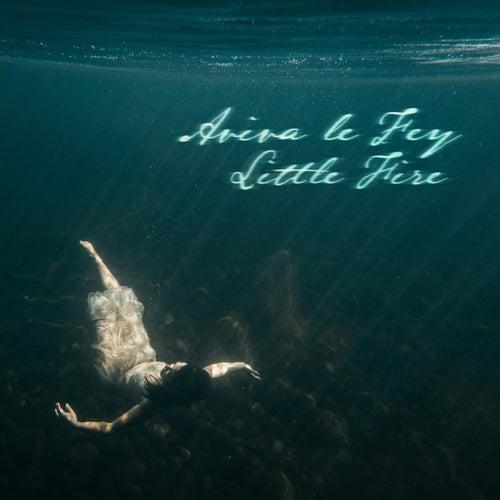 Little Fire by Aviva Le Fey