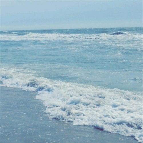 Waves de Noah Ashton