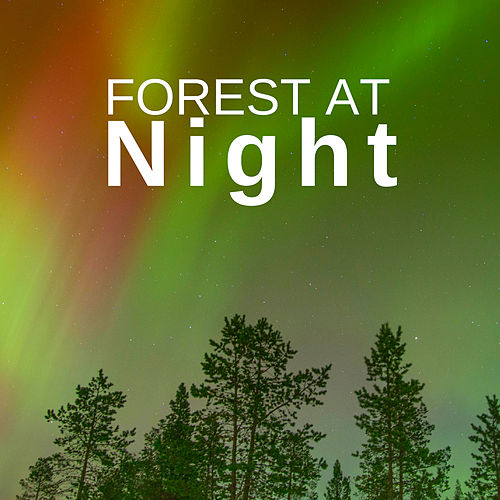 Forest at Night: Relaxing Nature Night Sounds de Deep Forest