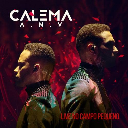A.N.V Live no Campo Pequeno by Calema