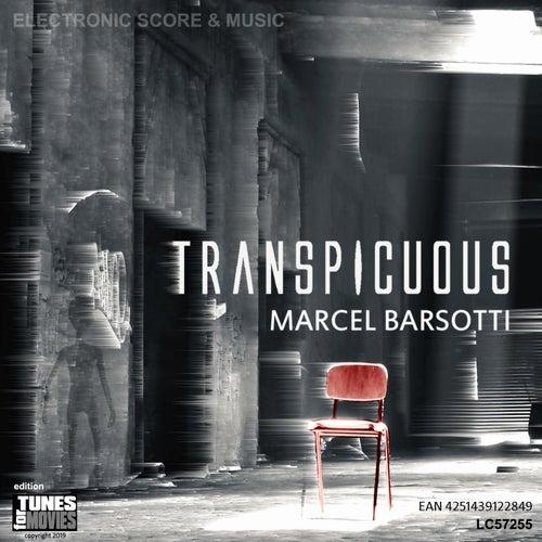 Transpicuous von Marcel Barsotti