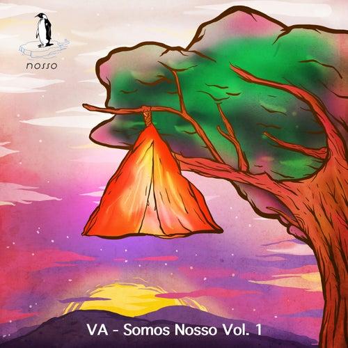 Somos Nosso, Vol. 1 de Various