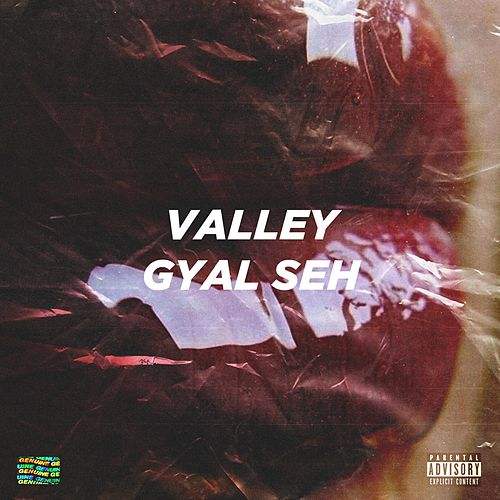 Gyal Seh by Valley