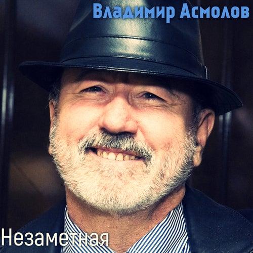 Незаметная fra Владимир Асмолов (Vladimir Asmolov )