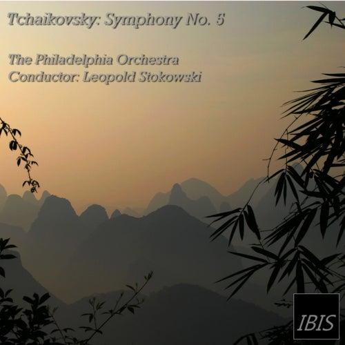 Tchaikovsky: Symphony No. 5, Op. 64 von Leopold Stokowski