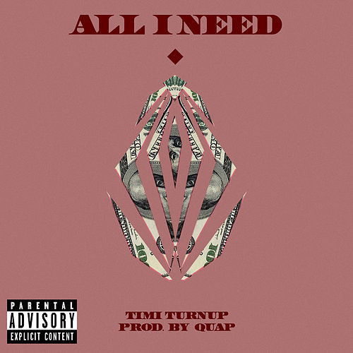 All I Need by Timi Turnup