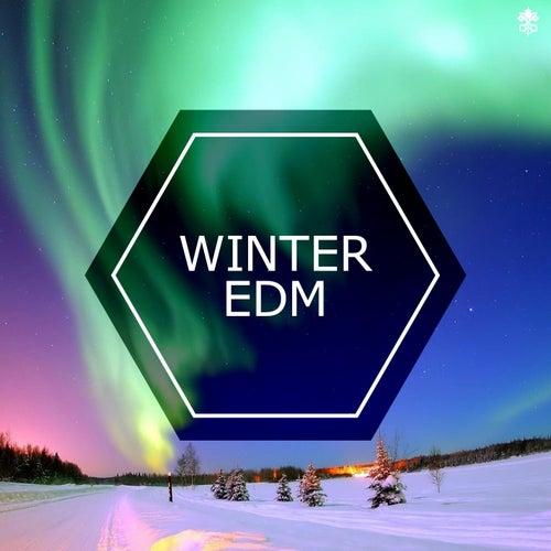 Winter EDM de Various Artists