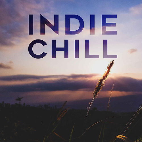 Indie Chill von Various Artists