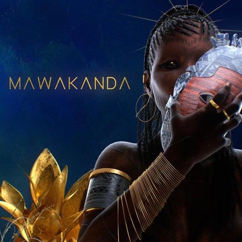 MaWakanda (feat. Ebenezer & Reo Cragun) by James BKS