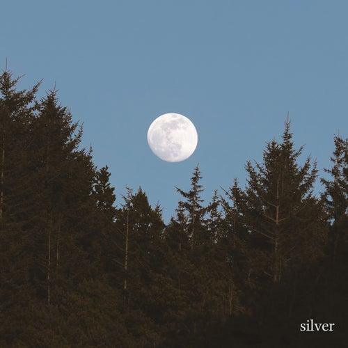 Silver von Misty Mtn