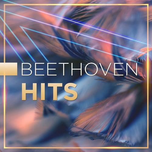Beethoven Hits de Various Artists