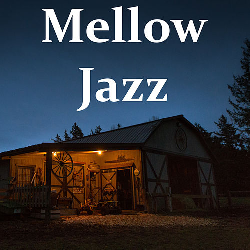 Mellow Jazz von Various Artists
