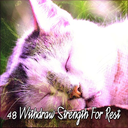 48 Withdraw Strength for Rest von Best Relaxing SPA Music