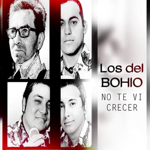 No Te Vi Crecer by Los Del Bohio