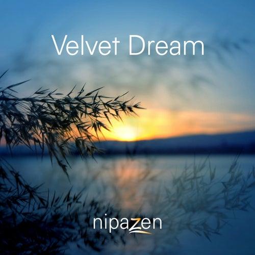 Velvet Dream by Nipazen