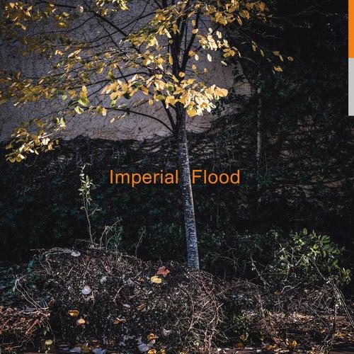 Imperial Flood de Logos