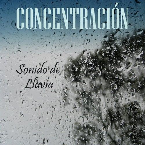 Concentración: Sonido de Lluvia de Musica Para Leer