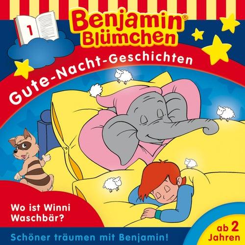 Gute-Nacht-Geschichten - Folge 1: Wo ist Winnie Waschbär? von Benjamin Blümchen