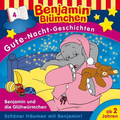 Gute-Nacht-Geschichten - Folge 4: Benjamin und die Glühwürmchen von Benjamin Blümchen