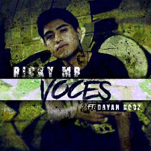 Voces by Ricky MB
