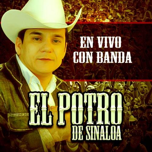 En Vivo Con Banda by El Potro De Sinaloa
