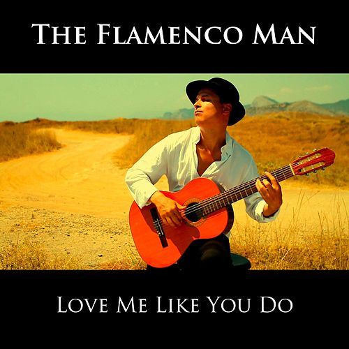 Love Me Like You Do von The Flamenco Man