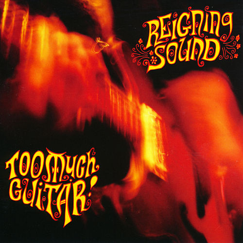 Too Much Guitar by Reigning Sound