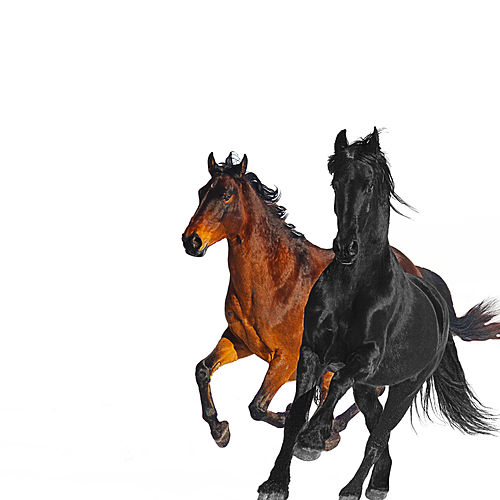 Old Town Road (feat. Billy Ray Cyrus) (Remix) by Lil Nas X