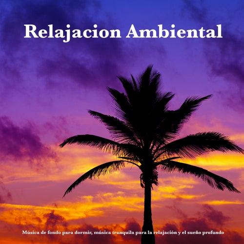 Relajación Ambiental:Música de fondo para dormir, música tranquila para la relajación y el sueño profundo de Música De Relajación Para Dormir Profundamente