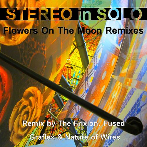 Flowers on the Moon Remixes by Stereo In Solo