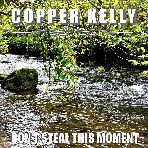 Don't Steal This Moment by Copper Kelly