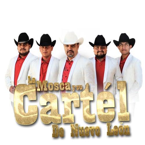 Disculpe Usted de La Mosca y su Cartél de Nuevo León