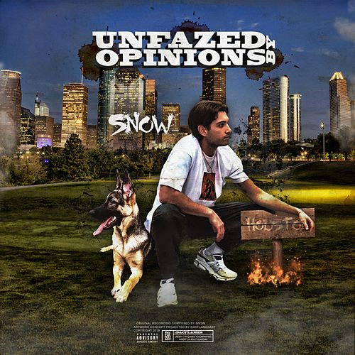 Unfazed by Opinions by Snow